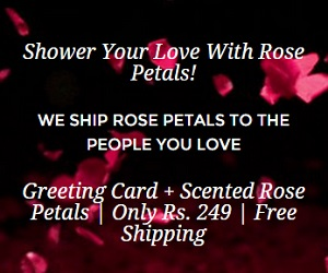 Ship Your Love Rose Petals