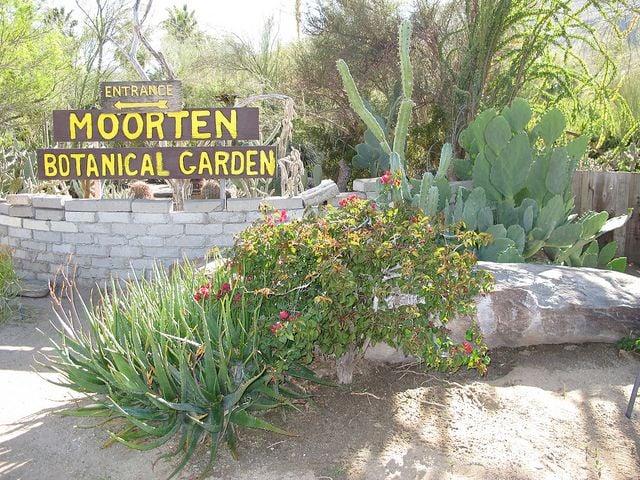 Moorten Botanical Garden