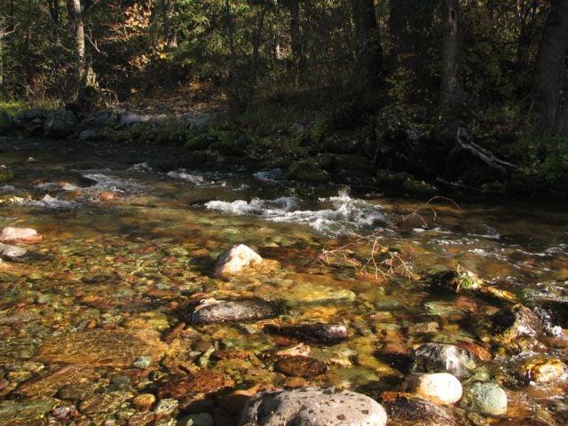 Rattlesnake National Recreation Area