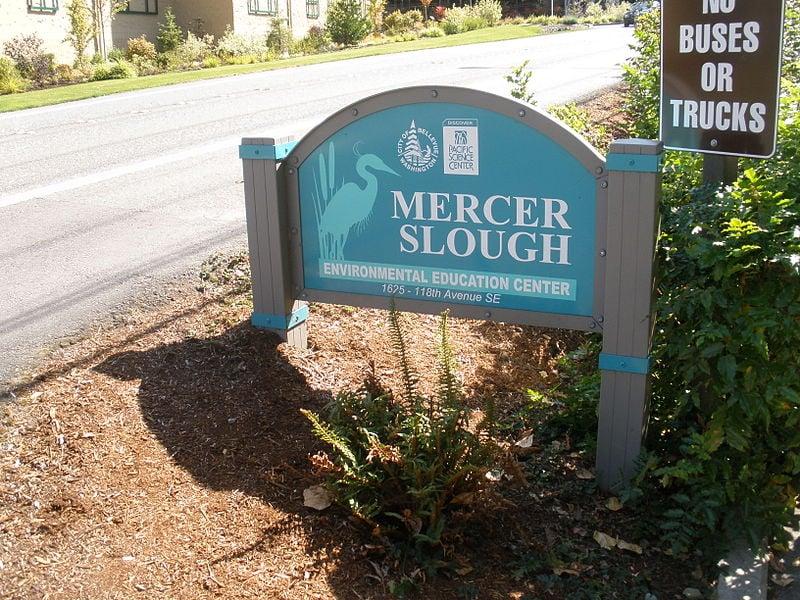 Mercer Slough Nature Park