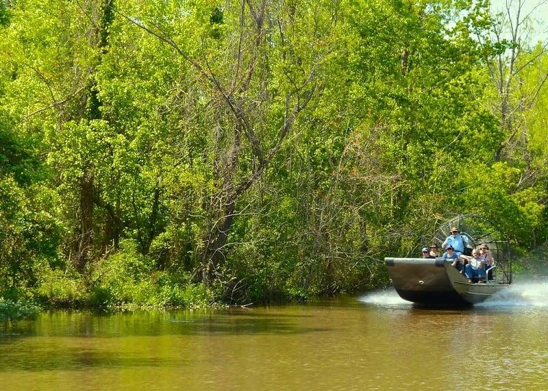 Take a Cajun Swamp Tour