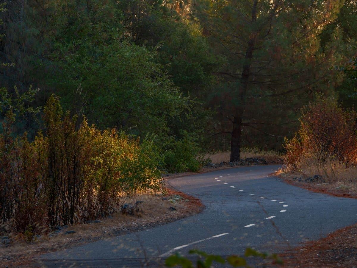 American River Bike Trail (Jedediah Smith Memorial Trail)