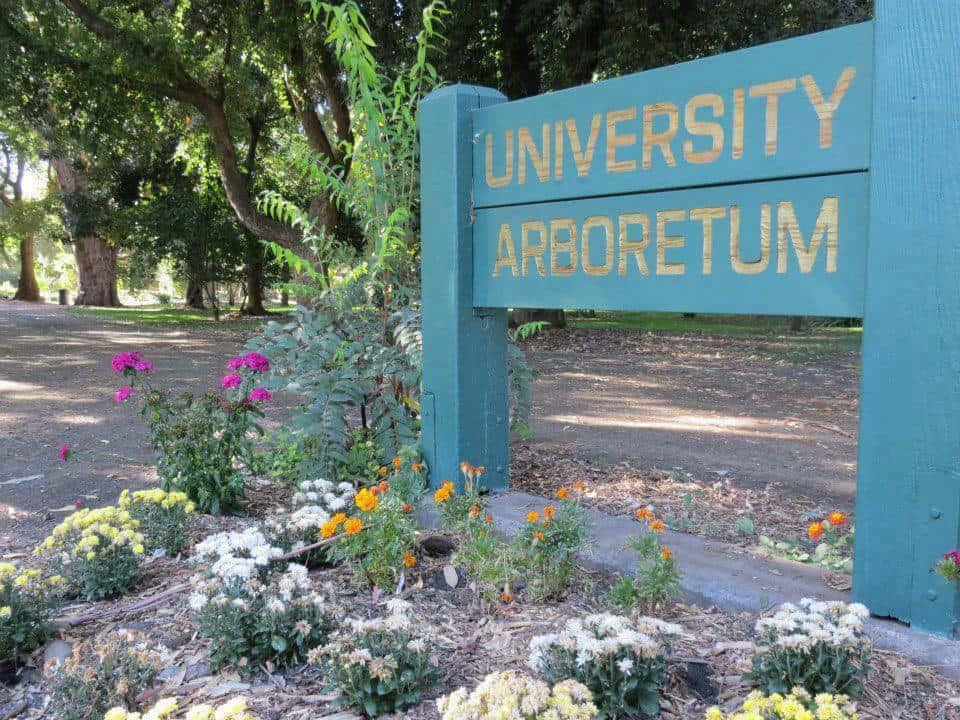 Sac State Arboretum