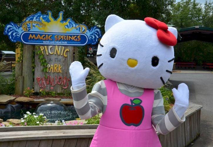 Arkansas: Magic Springs and Crystal Falls Water and Theme Park