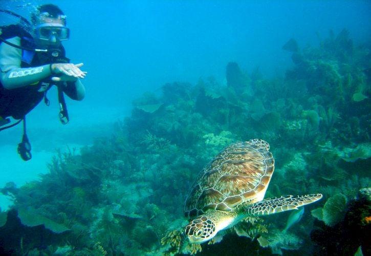 Florida Keys, Florida