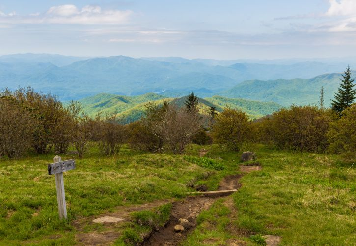 Andrews Bald Trail, Great Smoky Mountains, North Carolina and Tennessee