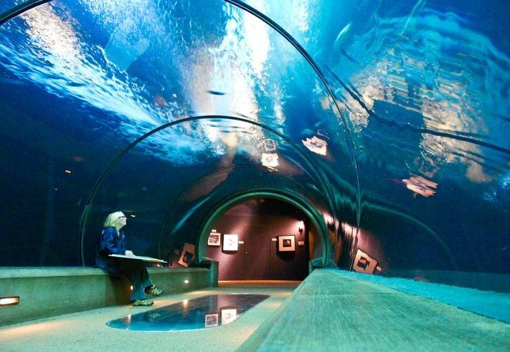 Oregon: Oregon Coast Aquarium