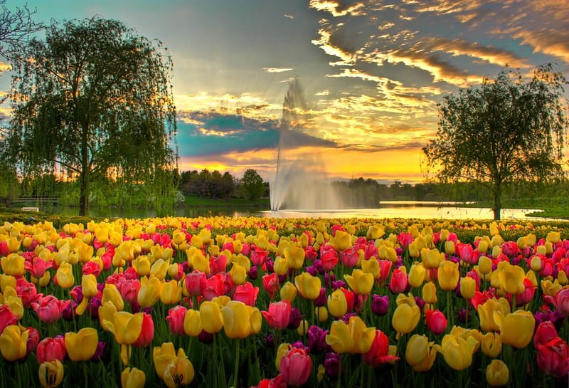 Chicago Botanic Garden, Chicago, Illinois