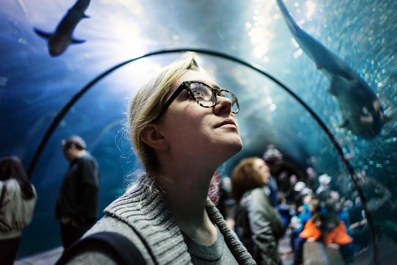 Oregon Coast Aquarium, Newport, Oregon