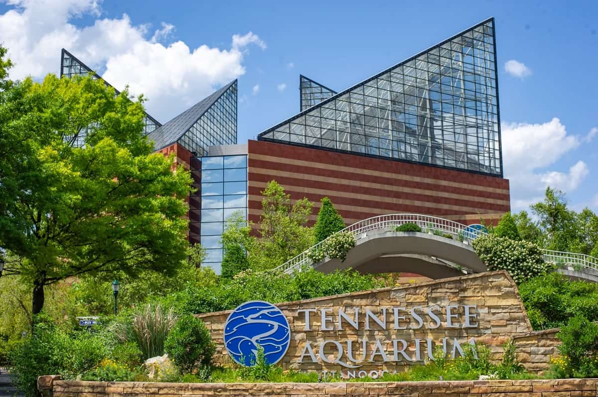 Tennessee Aquarium, Chattanooga