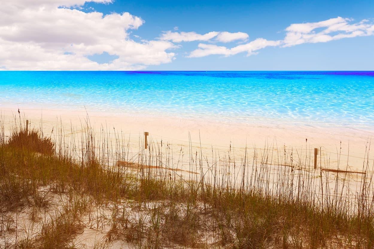 Henderson Beach State Park, Destin, Florida