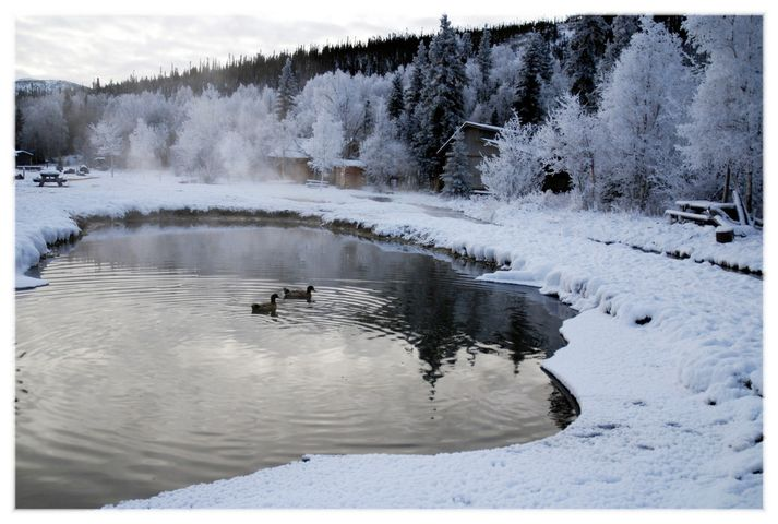 Chena Hot Springs, Fairbanks, Alaska