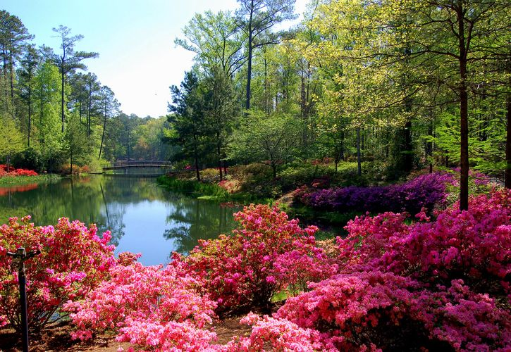 Callaway Gardens, Pine Mountain