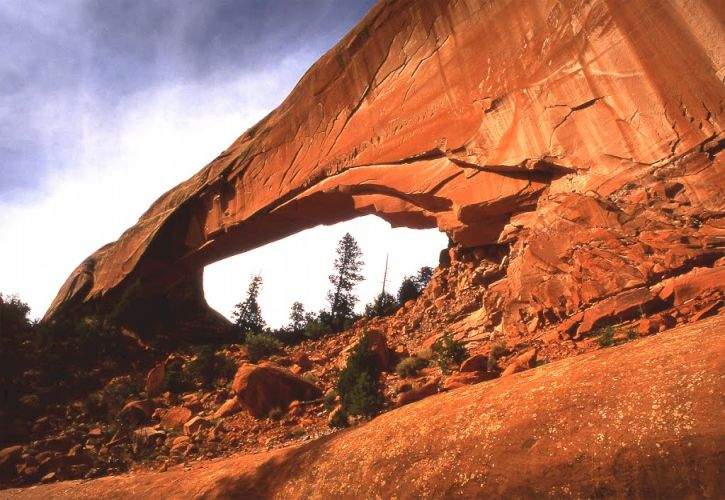 Snake Bridge, New Mexico