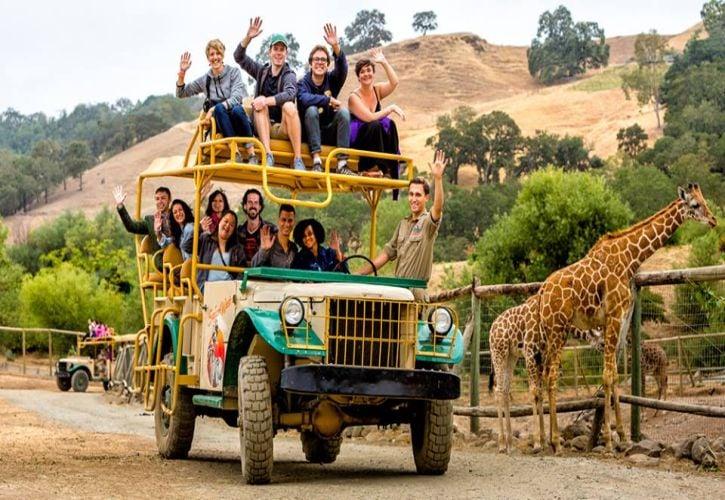 Safari West, California