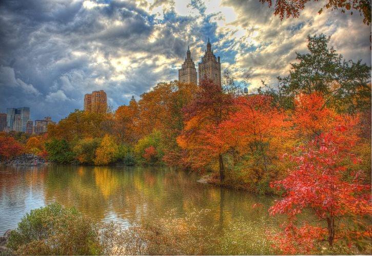Central Park (New York, New York)