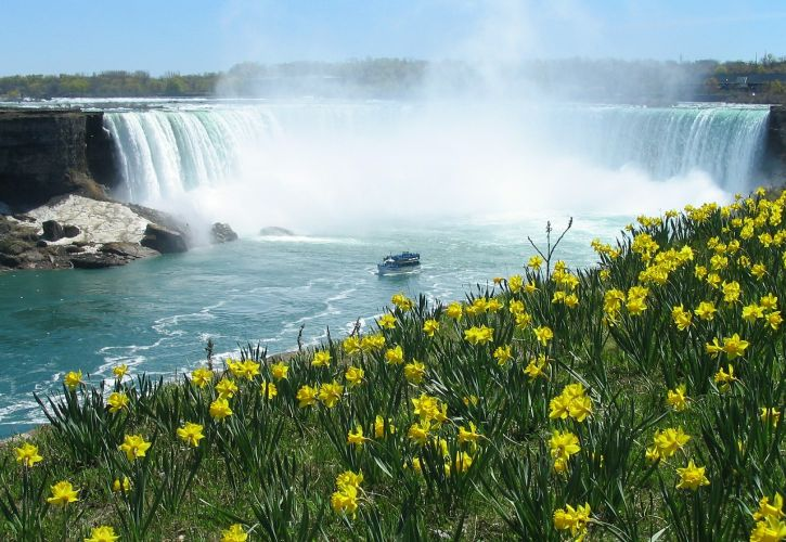 Niagara Falls (Niagara Falls, New York)