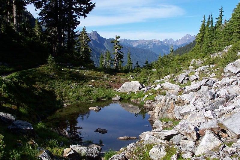 Olymic National Park