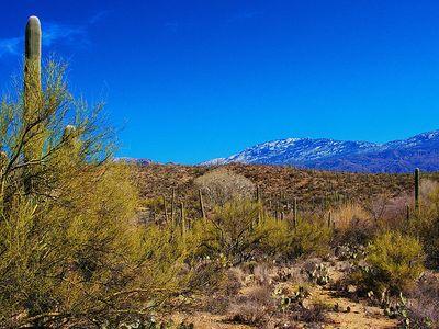 Tucson, Arizona Top 10 Attractions