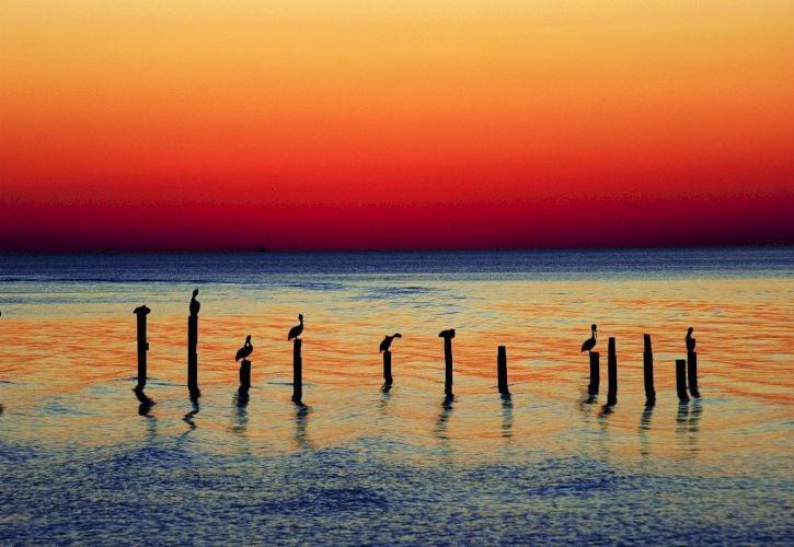 Gulf Coast Beaches & Water Activities