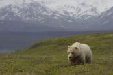 Top 10 Attractions in Alaska