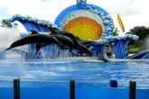 Top 10 Attractions in Florida