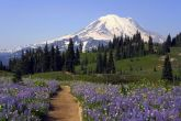 Top 10 Attractions in Washington State