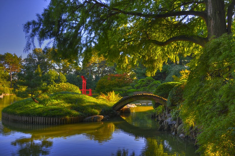 10 Best Botanical Gardens in the US