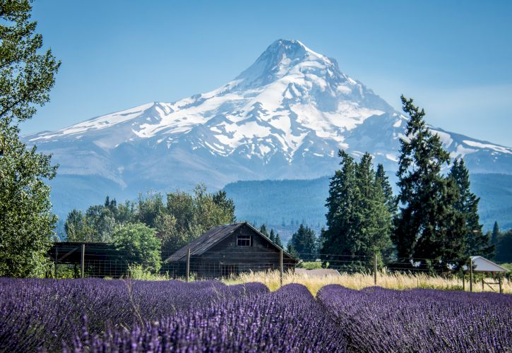 10 Most Beautiful Small Towns in Oregon