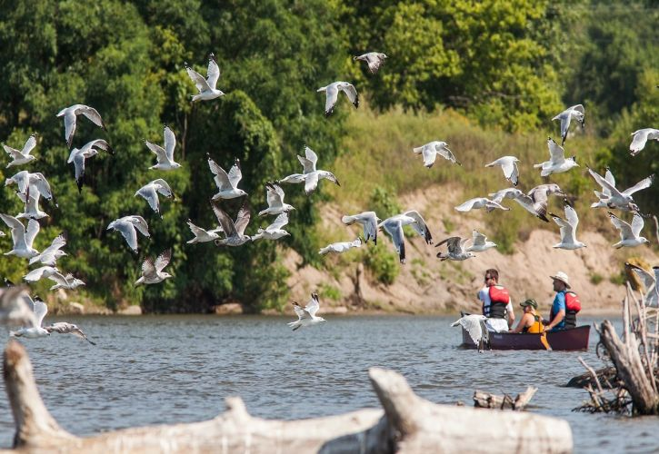 5 Things Adventure Lovers Have to Do in Northern Minnesota