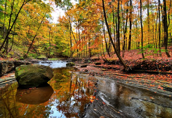 10 Best National Parks to See Fall Foliage in the US