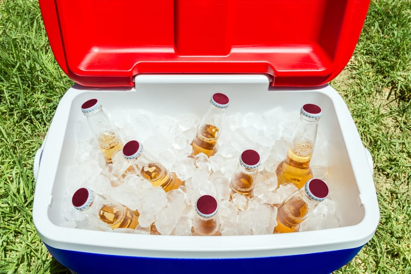 10 Best Camping Coolers in 2021